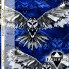 Owl blue, joustocollege