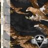 Eagle, joustocollege - TULOSSA 29.1.!